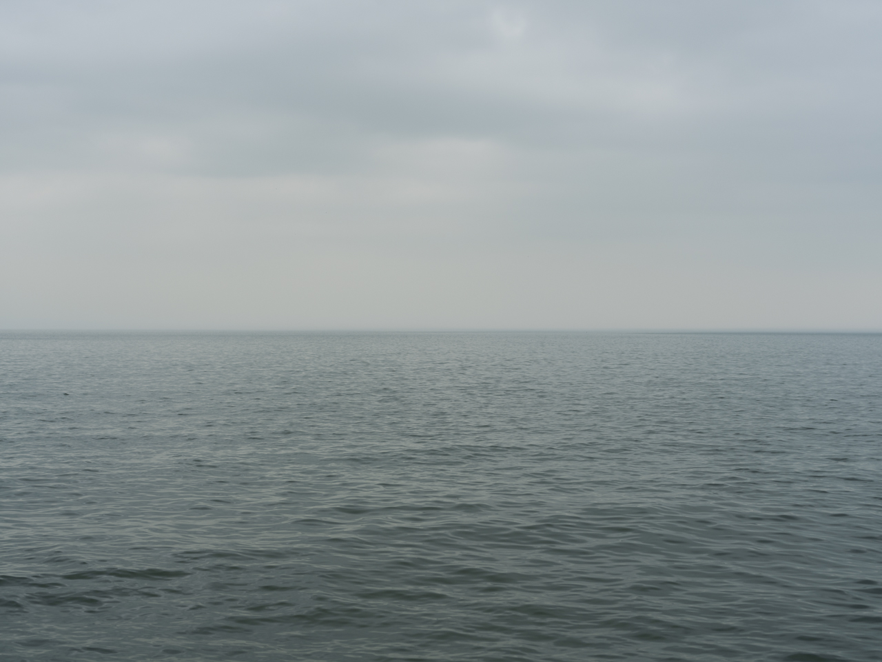 muted greens and grays on Lake Michigan with a heavy overcast sky that still feels light