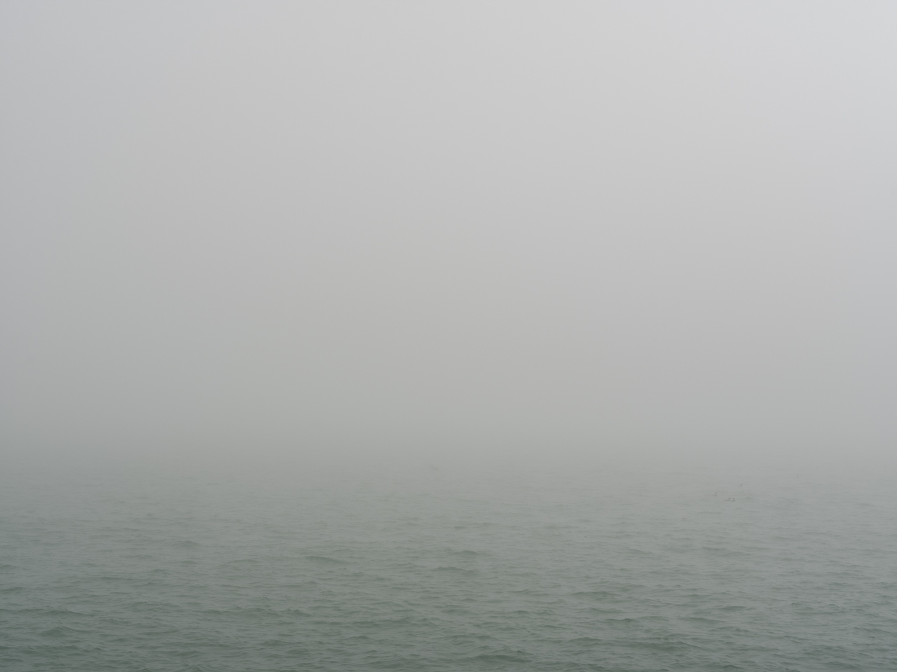 a heavy fog makes it hard to know where the lake and sky come together