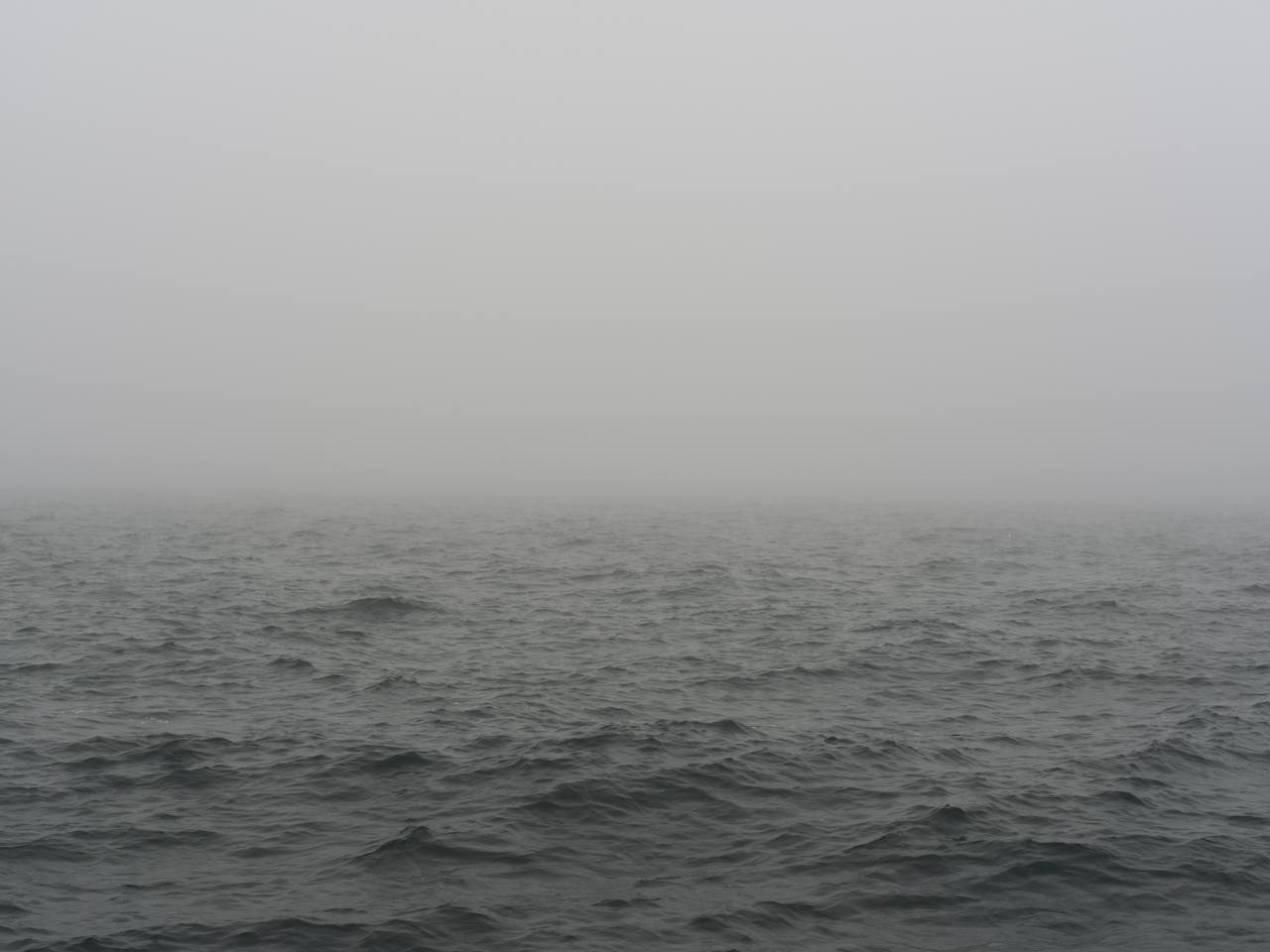 foggy and gray green day on Lake Michigan