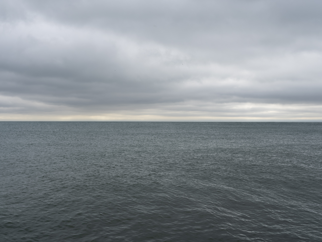 A light gray day over the lake