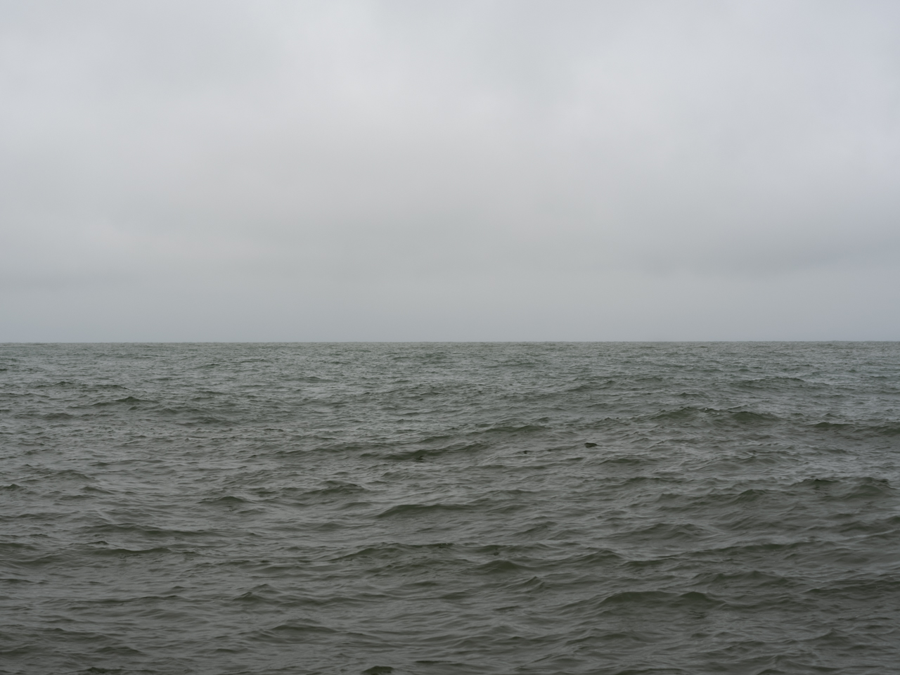 Gray-green day on Lake Michigan with light waves
