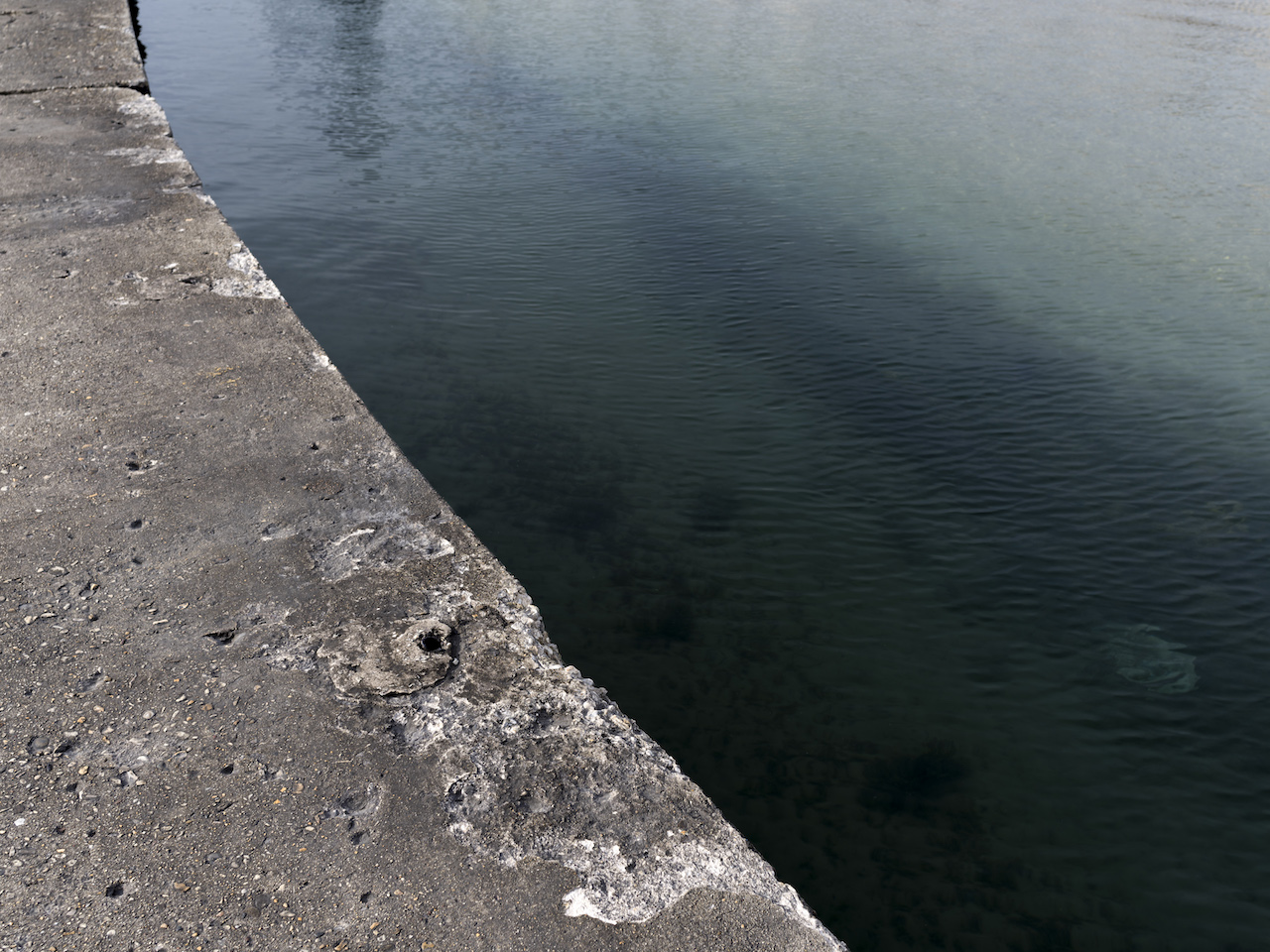 a small diagonal of concrete at waters edge, a water that is deep green