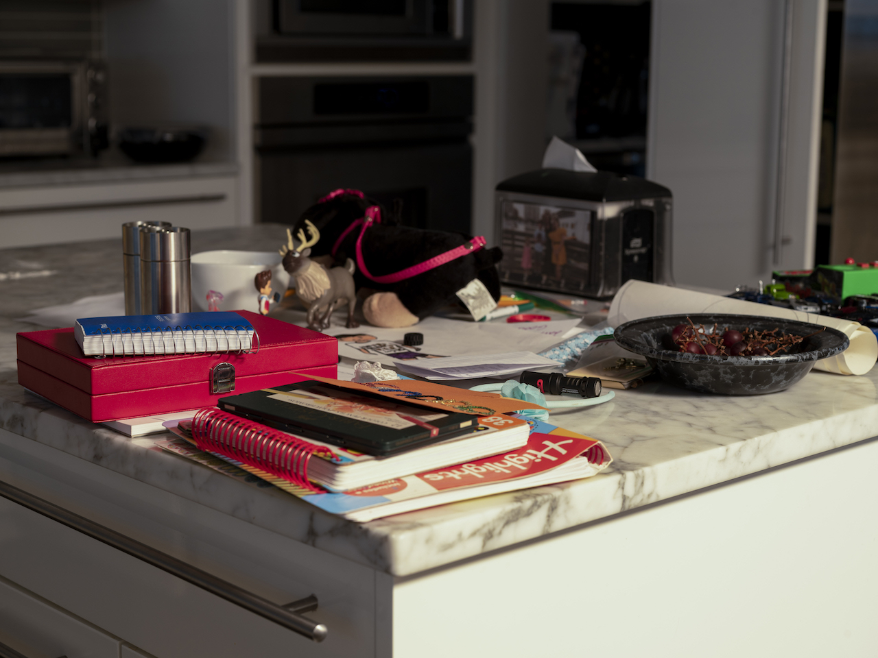 counter top in a kitchen covered in books, small childrens toys and other things