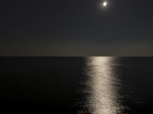 the lake at night, deep in darkness, the moon high in the photo is reflected in the dark black lake