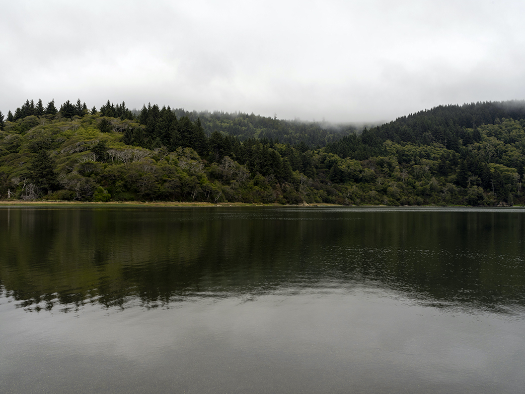 Lost Coast, California Redwood Forests sit behind a large body of water, fog is draped along the tops of the lush green forest