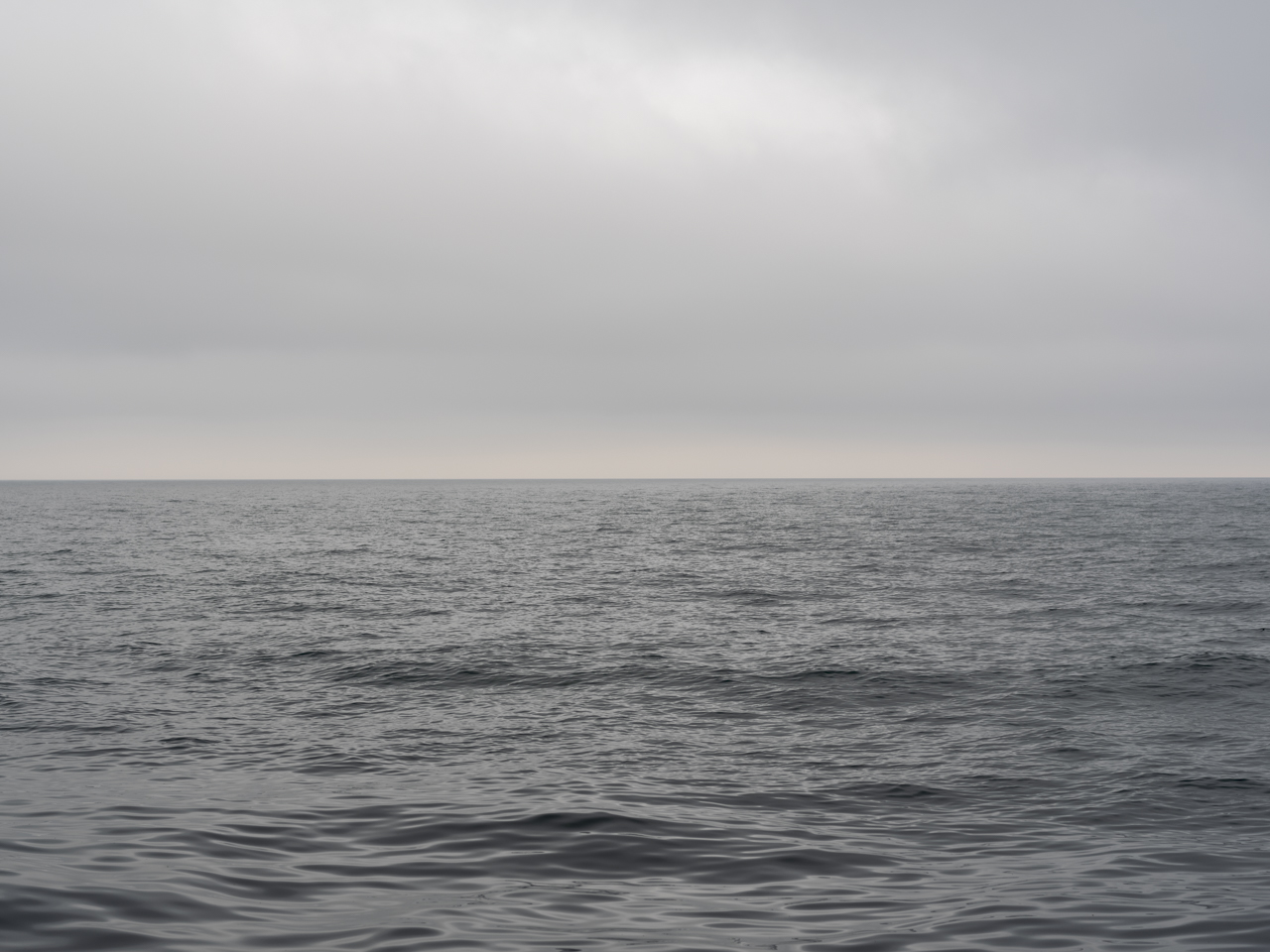 a monochrome Lake Michigan, in silvers and grays, sit delicately beneath a gauzy and cloudy sky