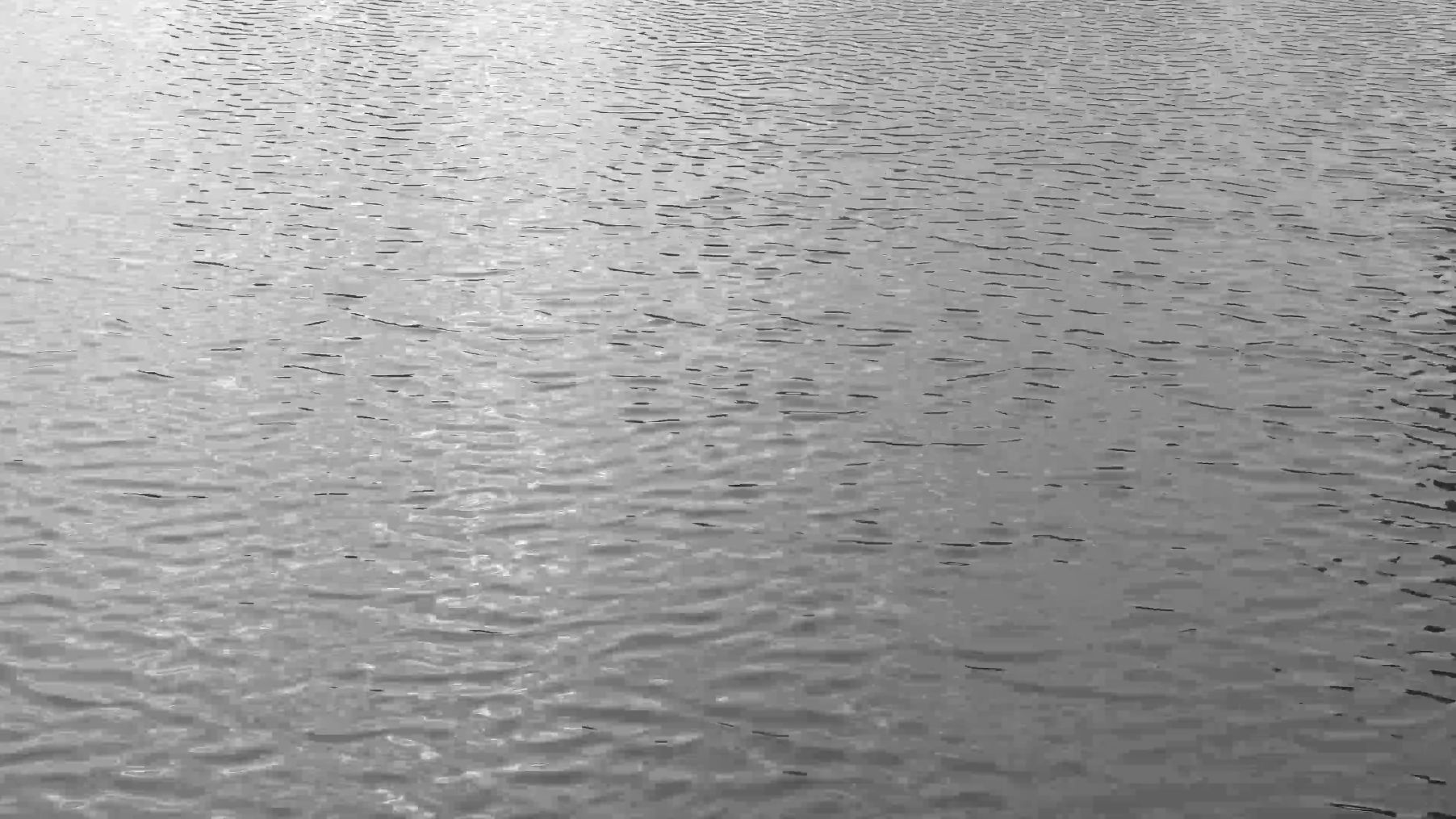 a video still from the Fujifilm GFX100 medium format camera featuring rippling waters of Lake Michigan