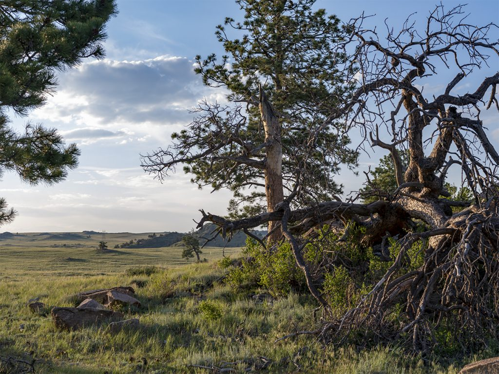 the Wyoming Grasslands as the sun begins to set in the west from photographer Lincoln Schatz