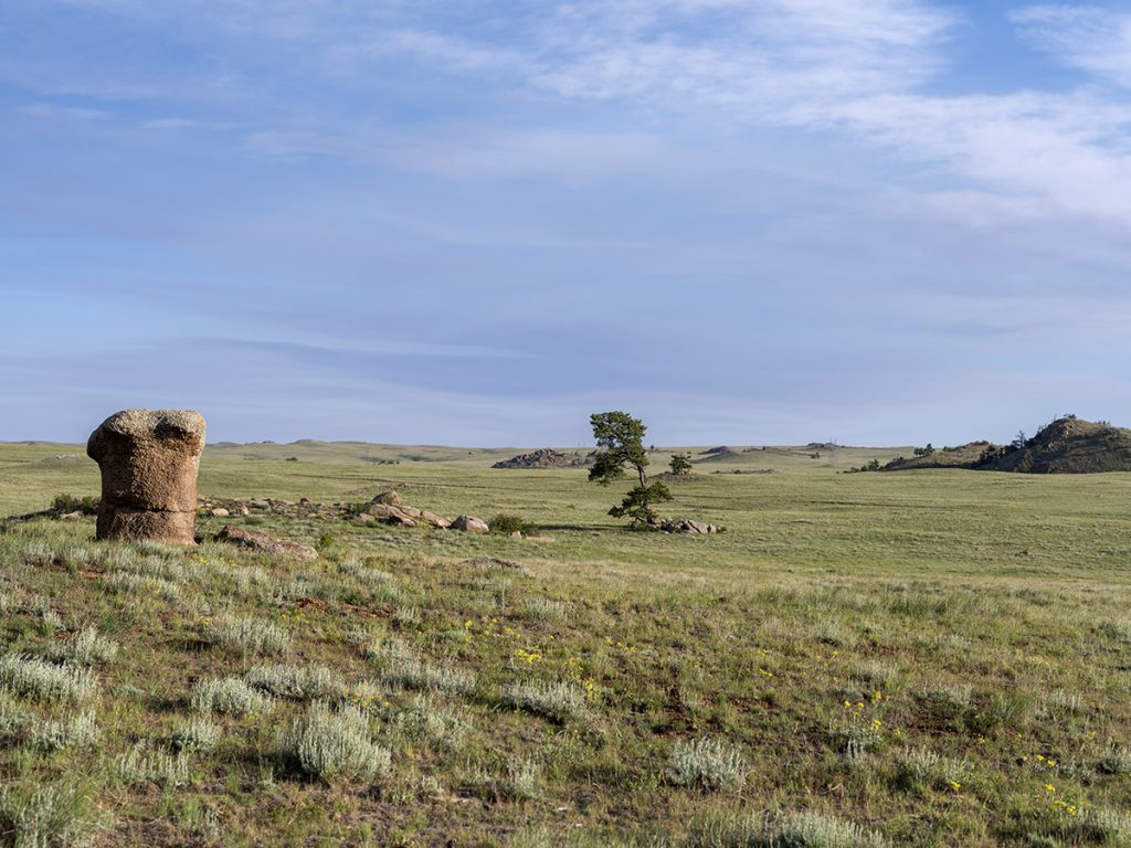 Grasslands of Wyoming sit under a beautiful blue sky in the summer of 2020